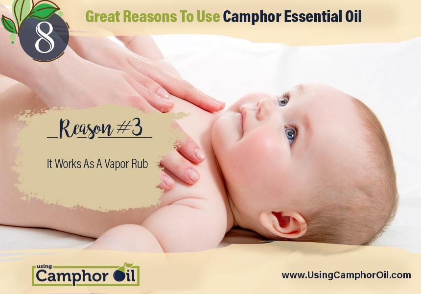 what is camphor essential oil used for